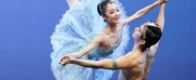 8th SA International Ballet Competition Will Be Performed at the Artscape Opera House in J Photo