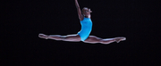 Ballerina Michaela Deprince To Chair Discussion On Inclusivity & Breaking Barriers In