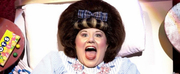 New North American Tour Of HAIRSPRAY Coming To Broadway San Jose!