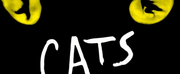 CATS at North Charleston Performing Arts Center Has Been Postponed
