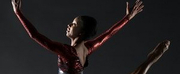Nai-Ni Chen Dance Company Launches The Bridge: Virtual Dance Classes August 3-7 Photo