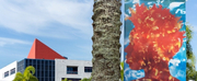 Museum of Contemporary Art, North Miami to Present After the Rain Comes Light: Portraits o Photo