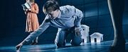 BWW Review: DEN MYSTISKE SAG OM HUNDEN I NATTEN at Odense Teater