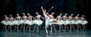 Casting Announced For SWAN LAKE at the New National Theatre, Tokyo