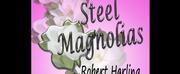 Theatre Palisades Presents STEEL MAGNOLIAS