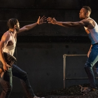 Photo Flash: First Look at Steppenwolf's THE BROTHERS SIZE Photo