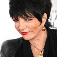 Liza Minnelli Reveals She Is Ready For Her Next Acting Job Photo