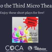 Tallahassee Hispanic Theater is Now Hosting the Third Micro Theater Festival Photo