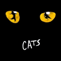 CATS Opens the Broadway Series at the Pikes Peak Center Next Month Photo