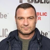 Liev Schreiber To Star in ACROSS THE RIVER AND INTO THE TREES Photo