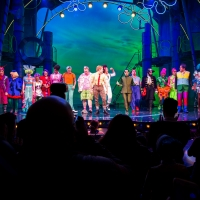 THE SPONGEBOB MUSICAL: LIVE ON STAGE Available on DVD Nov. 3 Photo