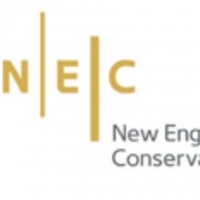 NEC's Student Ensembles Announce Upcoming Livestream Concerts Photo