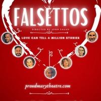 Proud Mary Theatre Company Presents Groundbreaking Musical FALSETTOSIn Spartanburg a Photo