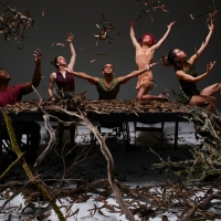 AXIS Dance Company's Final Home Season Under Artistic Director Marc Brew Will Debut Three Photo