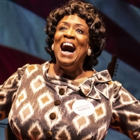 FANNIE Opens Tonight; Extended By Popular Demand at Goodman Theatre Photo