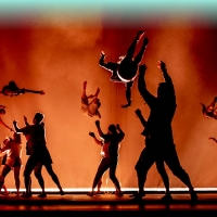 The 2021 Adelaide Festival Reveals Economic Impact Photo