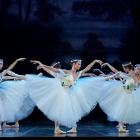GISELLE Will Celebrate 180th Anniversary With Performance From West Australian Ballet Photo