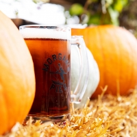 Morgan's Pier Presents FALL FEST On The Waterfront With Pumpkin Carving, Fall Decor,  Photo