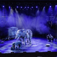 Photo Flash: Get a Look at All New Production Photos From CIRCUS 1903 at Southbank Centre's Royal Festival Hall