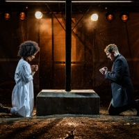 Photo Flash: First Look at ROMEO & JULIET at Regent's Park Open Air Theatre Photo