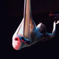 Dragon Productions Theatre Company Presents Cirque De La Luna In METAMORPHOSIS Photo