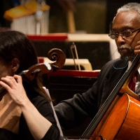 St. Louis Symphony Orchestra Launches Virtual Concert Series Photo