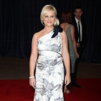 Amy Poehler's THE MOTHER-IN-LAW Gets NBC Pilot Commitment