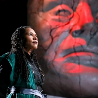 Photo Flash: First Look at JULIUS CAESAR at PlayMakers Photo