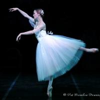Photo Flash: Roma City Ballet Company Luciano Cannito Presenta SCHIACCIANOCI Photos