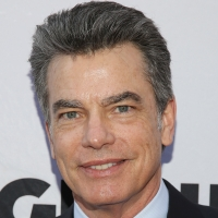 BWW Interview: Peter Gallagher Talks Starring in PALM SPRINGS on Hulu Photo