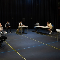 Northern Broadsides' BEYOND THESE WALLS WILL Present Tennessee Williams Works This Mo Photo