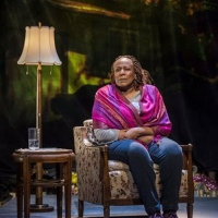 BWW Review: UNTIL THE FLOOD Explores Community Turmoil Following the Fatal Shooting of Michael Brown