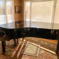 Family Auctions Special Edition Piano For Bangor Symphony Youth Orchestras Benefit Photo