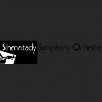 Schenectady Symphony Orchestra Announces BACH TO BASICS Virtual Concert Photo