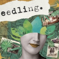 Audio Installation SEEDLING Explores Motherhood And Environmental Responsibility in N Photo