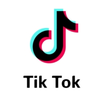 BWW Blog: TikTok and the Theatre World Photo