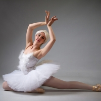 Northwest Ballet is Now Streaming ALORS ON DANSE Photo