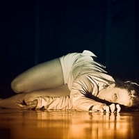 Phoenix Center for the Arts to Present NIGHTMARE: DREAMING REALITY Later This Month Photo