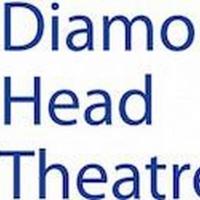 Diamond Head Theatre Begins Construction on New Theatre Building Photo