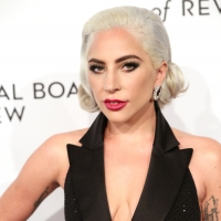 Lady Gaga Fell Offstage While Hugging a Fan