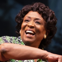 Photos: First Look at FANNIE at Goodman Theatre Photo