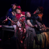 Photo Flash: First Look at LCT's INTIMATE APPAREL Directed by Bartlett Sher Photo