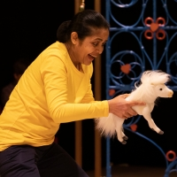 Photos: First Look at MAANIKA AND THE WOLF at the Polka Theatre Photos
