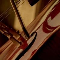 Sydney Opera House Announces 2021 Utzon Music Season Photo
