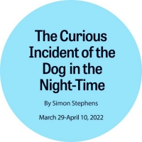 THE CURIOUS INCIDENT OF THE DOG IN THE NIGHT-TIME Comes to New Stage Theatre Next Yea Photo