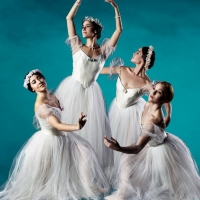 Milwaukee Ballet Sells Out In Person Tickets For TO THE POINE Photo
