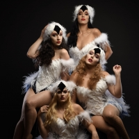 SWAN LAKE ROCK OPERA Will Begin Performances At Actors Temple Theatre Next Month Photo