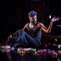MAI Presents ZOM-FAM By Kama La Mackerel Photo