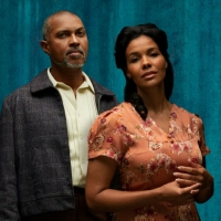 STC Announces Performance Updates For A RAISIN IN THE SUN and FANTASTIC MR. FOX Photo