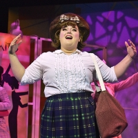 Photo Flash: Beef & Boards Dinner Theatre Presents HAIRSRPAY Photos